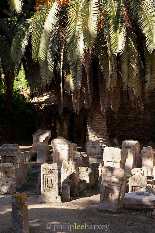 Palm tree in childs graveyard, Carthage, Tunisia