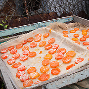 Tray of duck eggs laid out on a tray and salted to preserve