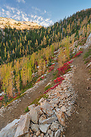 Pacific Crest Trail near Cutthroat Pass. North Cascades Washington