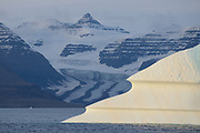 Sunrise light hits sculpted icebergs in Scoresby Sund Fjord, Greenland