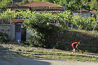 The housewife in the Albanian village clean the step and surroundings every morning. Lesser Lake Prespa, Lake Prespa National Park, Albania June 2009