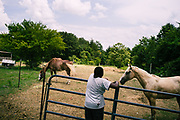 LOWNDES COUNTY, AL – JULY 10, 2017: Carlos Rush, 12, plays with his family's horses near the pipes that carry sewage from a trailer home into the woods.<br /> <br /> A recent study conducted by Baylor University suggests that nearly one 1 in 3 people in Lowndes County have hookworm, a parasite normally found in poor, developing countries. Below ground septic tanks are common in Lowndes, but due to the chalky clay soil throughout much of the Black Belt, septic tanks are prone to backing up into people's homes during heavy rains. With failing or absent municipal sewage systems in the county, many families choose to live with open, above ground sewer systems made from PVC pipe, which pump raw sewage into nearby streams or open land.
