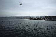 Trieste,vista mare da un molo.Trieste, overlooking the sea from a pier.