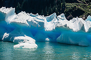 See shapely icebergs from South Sawyer Glacier floating in Tracy Arm Fjord, in the Alaska Panhandle, via day cruise from Juneau, Alaska, USA. We highly recommend the smoothly stabilized day cruise aboard the 56-foot boat Adventure Bound. This journey to the heart of Tracy Arm-Fords Terror Wilderness (Tongass National Forest) rivals Norwegian fjords and adds a punchbowl of icebergs from the spectacular South Sawyer Glacier, which calved ice into the tidewater with a rumble and a splash. Whales, bears, sea lions and other wildlife showed up along the way. The fjord twists narrowly 30 miles into the coastal mountains, with peaks jutting up to a mile high, draped with tumbling waterfalls.