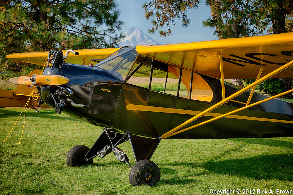 Piper J3P Cub at the Hood River Fly In at the Western Antique Aeroplane and Automobile Museum.