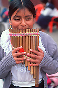 ECUADOR, MARKETS, CRAFTS Otavalo, 'rondador' or 'zampona' anpipes