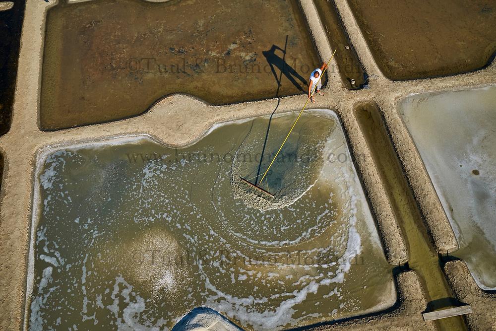 France, Loire-Atlantique (44), Guérande, les marais salants de Guérande, le paludier Gregory Pitard // France, Loire-Atlantique, Guérande, Salt marshes of Guerande