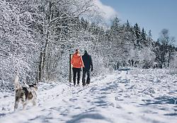 THEMENBILD - Wanderer und ihr Hund genießen die winterlich, verschneite Landschaft bei Sonnenschein. Das Naturdenkmal Wasenmoos lädt auch im Winter zu ausgedehnten Wanderungen in den Kitzbüheler Alpen ein, aufgenommen am 21. November 2020 in Mittersill, Oesterreich // Hikers and their dog enjoy the wintery, snowy landscape in sunshine. The natural monument Wasenmoos invites you also in winter to extensive hikes in the Kitzbüheler Alps, in Mittersill, Austria on 2020/11/21. EXPA Pictures © 2020, PhotoCredit: EXPA/Stefanie Oberhauser