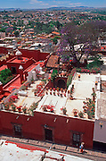 MEXICO, SAN MIGUEL ALLENDE rooftops and wealthy private gardens