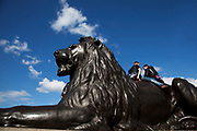 Tourists climb onto the famous lion statues in Tralgar Square. London.