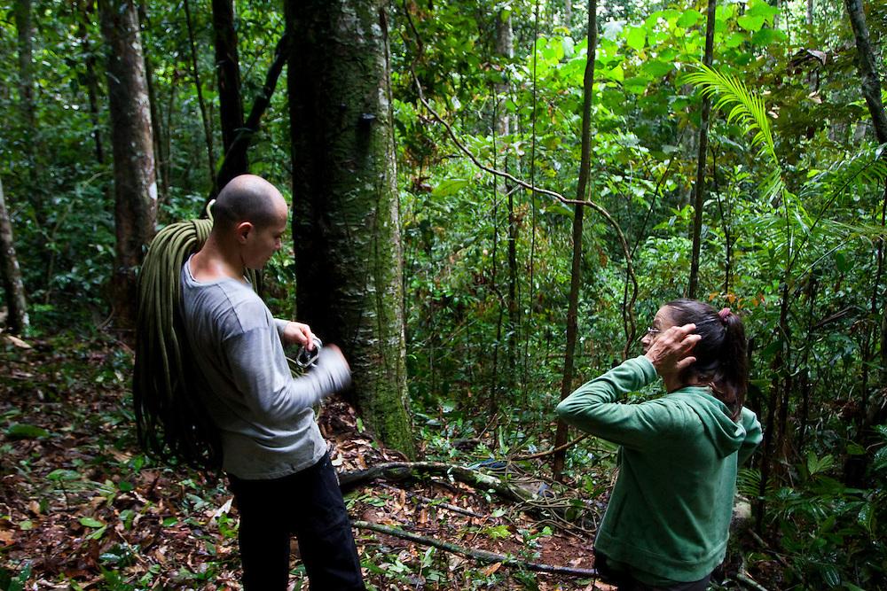 Parauapebas_PA, Brasil...Floresta Nacional de Carajas. Pesquisadores trabalhando em meio a floresta amazonica...The Carajas National forest. The researchers working in the Amazon rain forest.. .Foto: JOAO MARCOS ROSA / NITRO