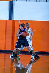 27 December 2013:  El Paso - Gridley Titans and Kankakee Bishop MacNamara Irish. Small School Girls bracket. 2013 State Farm Holiday Classic Tournament at Normal Community High School, Normal IL