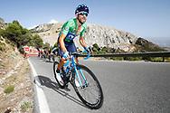 Alejandro Valverde (ESP - Movistar) Green Jersey, during the UCI World Tour, Tour of Spain (Vuelta) 2018, Stage 4, Velez Malaga - Alfacar Sierra de la Alfaguara 161,4 km in Spain, on August 28th, 2018 - Photo Luca Bettini / BettiniPhoto / ProSportsImages / DPPI
