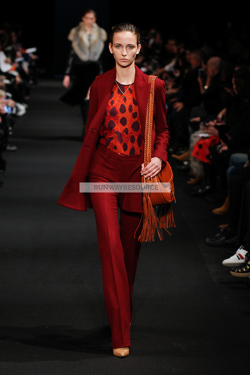 Waleska Gorczevski (DNA) walks the runway wearing Altuzarra Fall 2015 during Mercedes-Benz Fashion Week in New York on February 14, 2015