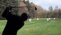 LOCHEM -    Driving Range Lochemse Golf Club De Graafschap. COPYRIGHT KOEN SUYK