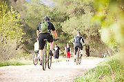 Fitness in the Outdoors on Trail