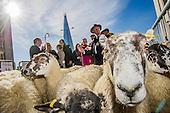 Sheep driven over London Bridge