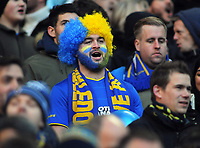 Football - 2017 / 2018 FA Cup - Third Round: Tottenham Hotspur vs. AFC Wimbledon<br /> <br /> Wimbledon fan cheers them on, at Wembley Stadium.<br /> <br /> COLORSPORT/ANDREW COWIE