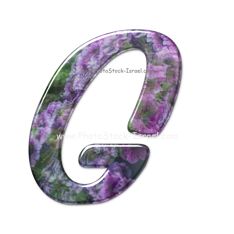 The Capitol Letter G Part of a set of letters, Numbers and symbols of 3D Alphabet made with a floral image on white background