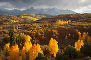 The last moments of direct light on the changing aspen at the Dallas Divide overlook. (Sorry I wasn't able to include the nice fence in the composition.)