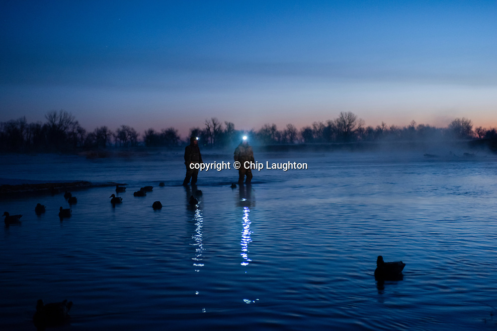 duck, goose, waterfowl, hunting, stock, photography, photo, image,