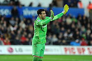 Adrian, the West Ham goalkeeper looks on.  Barclays Premier league match, Swansea city v West Ham Utd at the Liberty Stadium in Swansea, South Wales  on Sunday 20th December 2015.<br /> pic by  Andrew Orchard, Andrew Orchard sports photography.