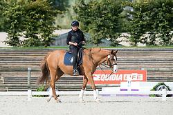 Brenner Hannelore, (GER), Women Of The World<br /> Grade IV Team Test<br /> Para-Dressage FEI European Championships Deauville 2015<br /> © Hippo Foto - Jon Stroud<br /> 16/09/15