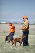 SHOT 5/9/20 10:17:38 AM - Various pointing breeds compete in the Vizsla Club of Colorado Licensed Hunt Test Premium at the Rocky Mountain Sporting Dog Club Grounds in Keenesburg, Co. (Photo by Marc Piscotty / © 2020)