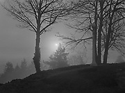 9969-0388. Sunrise from Mt. Tabor Park. March 1, 1931. Portland, Oregon