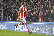 Stoke city's Steven N'Zonzi celebrates in front of the Stoke supporters after scoring his sides 2nd goal during the Barclays Premier league, Stoke city v Sunderland at the Britannia stadium in Stoke on Trent, England on Saturday 23rd Nov 2013. pic by Jeff Thomas, Andrew Orchard sports photography,