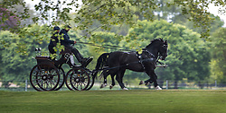 © Licensed to London News Pictures. 09/05/2017. Windsor, UK.  Competitors in The Royal Windsor Horse Show exercise their horses on the banks of the River Thames ahead of the five day event. The show takes place from tomorrow until Sunday in the grounds of Windsor Castle. Photo credit: Peter Macdiarmid/LNP