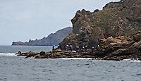 Coasteering at Grev du leq on Jerseys North Coast