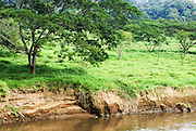 Tarcoles River, AKA  Rio Grande de Tarcoles, Costa Rica