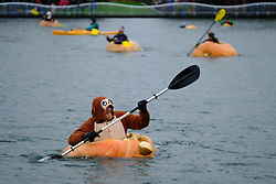 Paddlers race giant pumpkins across Lake of the Commons at the 14th annual West Coast Giant Pumpkin Regatta in Tualatin, Ore. on October 21, 2017. (Photo by Alex Milan Tracy)