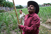 """In this July 26, 2016 photo, newlyweds Pablo Ibarra, 75, and Francisca Santiago, 65, locate a ripe tuna fruit from a top of a cactus in Santa Ana, in the Mexican state of Oaxaca. Just three days earlier Ibarra married his life-long partner Santiago for a second time, but in a religious ceremony at the Catholic church in Santa Ana. """"It felt like the first time I saw her,"""" Ibarra said. """"But now it finally feels right. With her, God has blessed my life so much."""" NICK WAGNER / ASSOCIATED PRESS"""