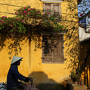 A street scene in Hoi An, Vietnam as a Vietnamese lady rides past a bright yellow wall with hanging summer flowers. Hoi An is an ancient town and an exceptionally well-preserved example of a South-East Asian trading port dating from the 15th century. Hoi An is now a major tourist attraction because of its history. Hoi An, Vietnam. 5th March 2012. Photo Tim Clayton