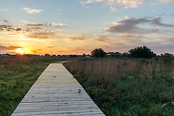 Boardwalk into Lawther — Deer Park Prairie, managed by Native Prairies Association of Texas, Deer Park, Texas. USA. The prairie is a pristine example of a coastal prairie. Less than 1% of the original 9 million acres of coastal prairie in Texas and Louisiana remains. See https://texasprairie.org/deerpark/.