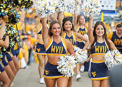 Sep 18, 2021; Morgantown, West Virginia, USA; West Virginia Mountaineers cheerleaders lead the team into the stadium prior to their game against the Virginia Tech Hokies at Mountaineer Field at Milan Puskar Stadium. Mandatory Credit: Ben Queen-USA TODAY Sports