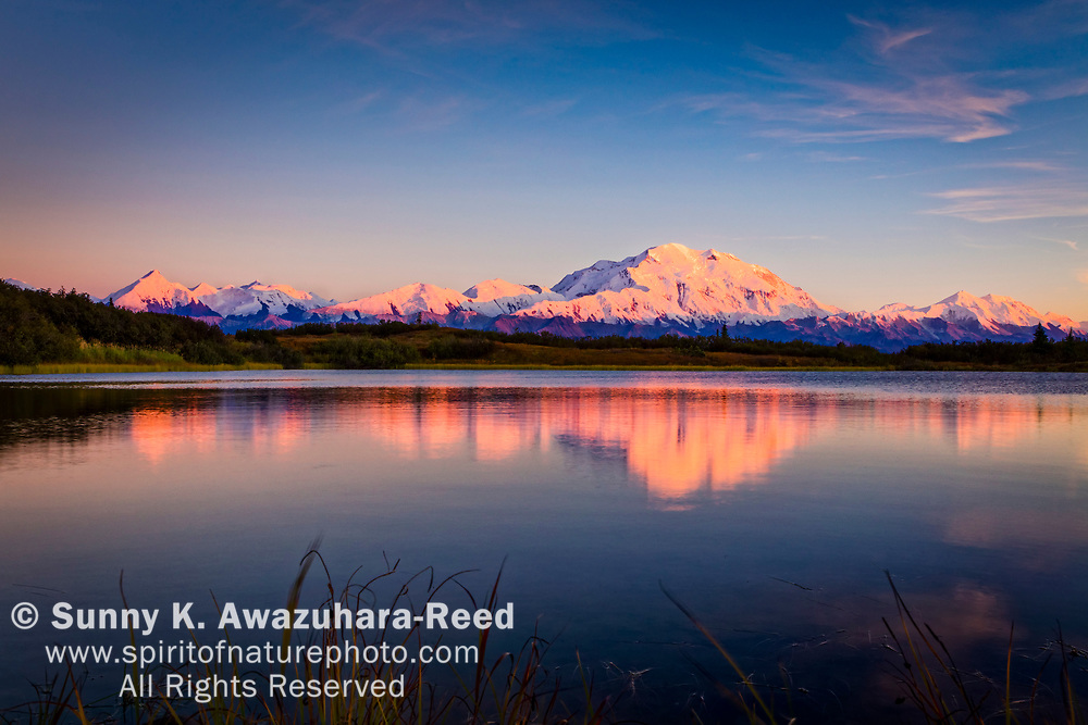 Sunset glow on Mt. Denali (McKinley) reflects on Reflection Pond, Denali National Park & Preserve, Interior Alaska, Autumn.