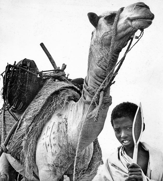 Somali nomad herds boy with spear