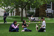 A family of three is pictured in different perspective while spending their afternoon at St James' Park in London, Britain, on Sunday, May 3, 2020. Britons are now in their sixth week of lockdown due to the Coronavirus pandemic. Countries around the world are taking increased measures to stem the widespread of the SARS-CoV-2 coronavirus which causes the Covid-19 disease. (Photo/ Vudi Xhymshiti)