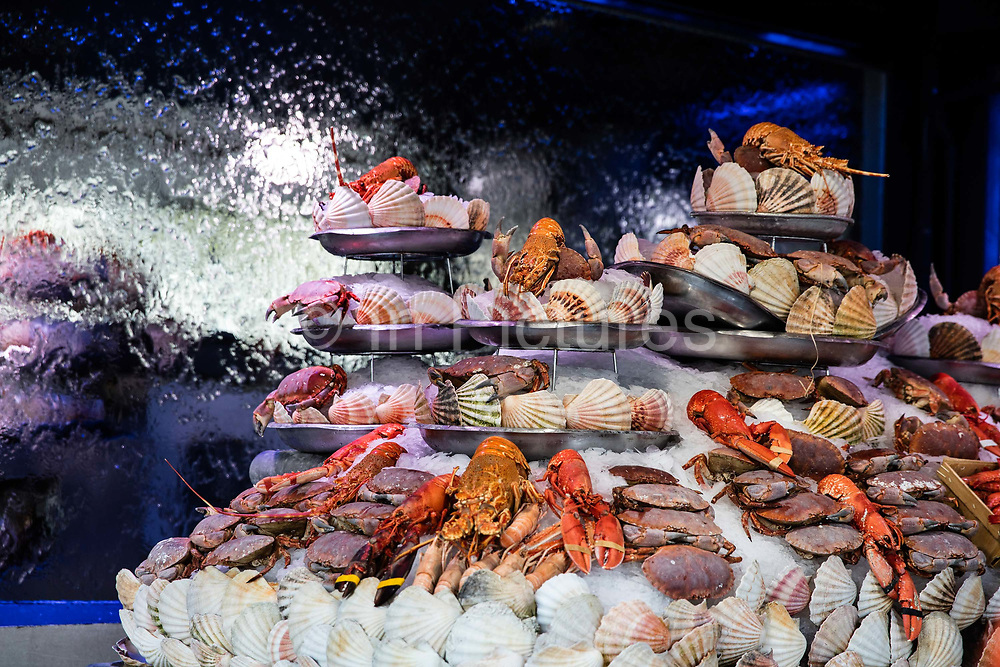 Seafood packed in ice on display at the oyster bar, Boulevard Beaumarchais, Paris, France.