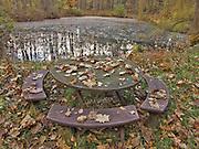 rustic fall scene