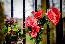 Flowers on the locked gates of the Covenanter's Prison in Grey Friars church yard in Edinburgh, Scotland<br /> <br /> (c) Andrew Wilson   Edinburgh Elite media