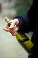 holding a bottle of dauvissat chablis