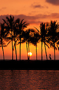 Silhouetted palm trees and woman at sunset, Kohala Coast, The Big Island, Hawaii USA