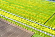 Nederland, Flevoland, Lelystad, 07-05-2015; rijksweg A6 tussen Lelystad en Almere. Voorjaar met de gele bloemen van het raapzaad.<br /> Motorway through the new polder and the yellow flowers of rapeseed in spring.<br /> <br /> luchtfoto (toeslag op standard tarieven);<br /> aerial photo (additional fee required);<br /> copyright foto/photo Siebe Swart