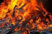 Bonfire burning timber, New Zealand