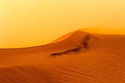 Desert Sand Dune. Photographed in Israel, Negev Desert