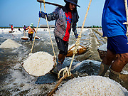 28 MARCH 2018 - BAN LAEM, PHETCHABURI, THAILAND: Workers bring freshly gathered salt into a warehouse during the 2018 salt harvest in Petchaburi province, about two hours south of Bangkok. Sea salt is made in provinces south of Bangkok by flooding fields with ocean water after the rainy season. As the fields dry out from evaporation, workers go into the fields and gather the salt left behind.      PHOTO BY JACK KURTZ